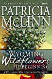 Wyoming Wildflowers: The Beginning: A Prequel