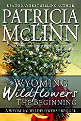 Wyoming Wildflowers: The Beginning (A Western Romance): Prequel to Wyoming Wildflowers Series (English Edition)