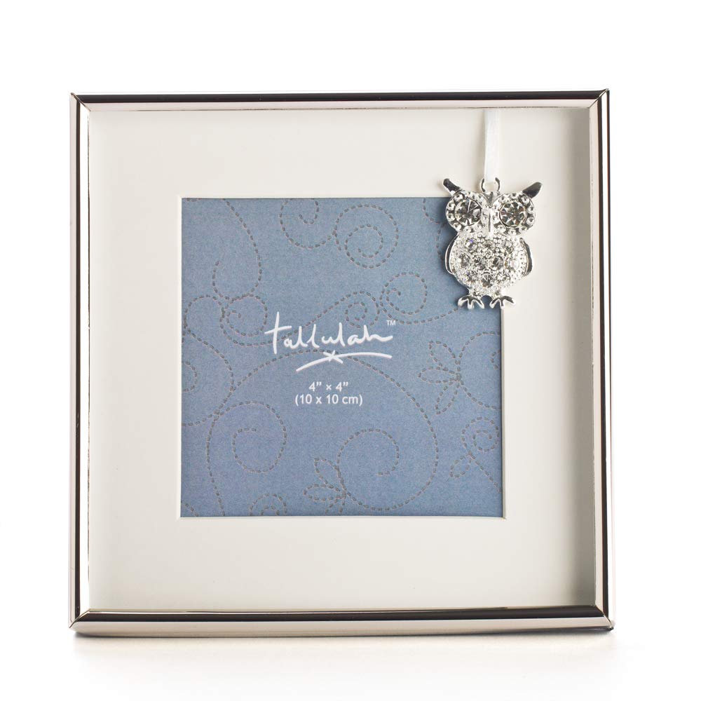 Silver Owl Charm Baby Photo Frame XU-PFB_CO
