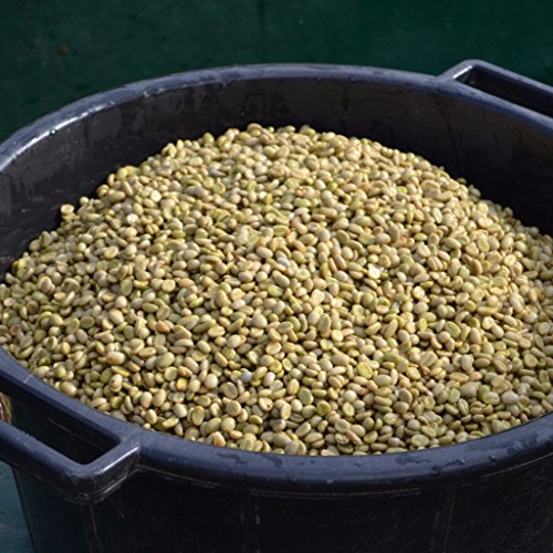 5LBS Papua New Guinea Arokara Unroasted Green Coffee Beans