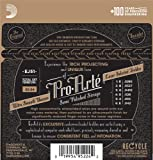 D\'Addario EJ51 Pro-Arte Classical Guitar Strings with Polished Basses, Hard Tension