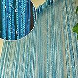 Best Norbi Curtains For Living Rooms - Norbi Vogue Tassel String Door Window Room Divider Review