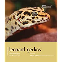 Leopard Gecko - Pet Expert: Understanding and Caring for Your Pet
