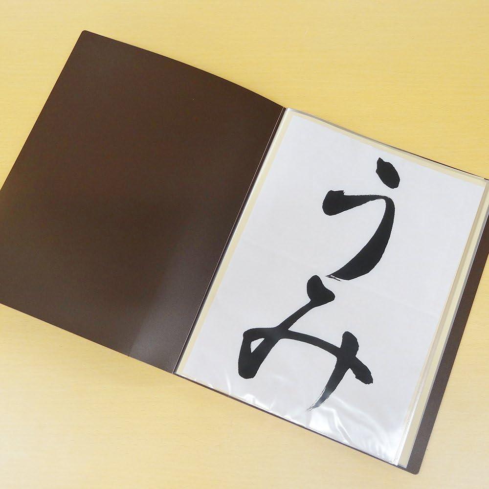 呉竹 ファイル 書道用 作品ファイル 半紙用 ブラウン KN22-1