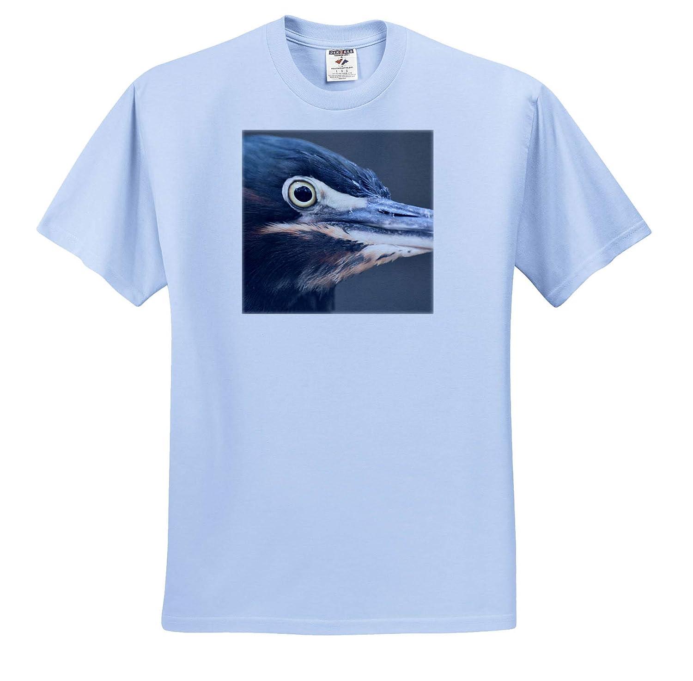 T-Shirts 3dRose Susans Zoo Crew Animal Kingfisher Bird face