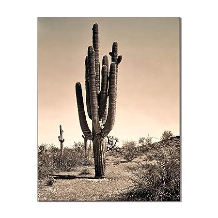 zlhcich Planta de Cactus decoración del hogar Pintura 06252 ...