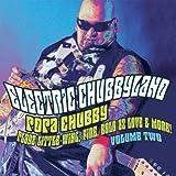 Vol.2-Electric Chubbyland