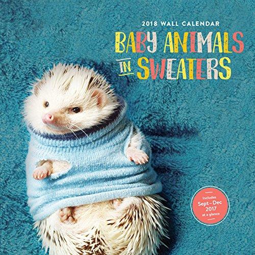 Sluh Calendar.2018 Wall Calendar Baby Animals In Sweaters Chronicle Books