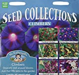 Mr. Fothergill's Flower Climber Collection Mixed Seed 6 Sachet