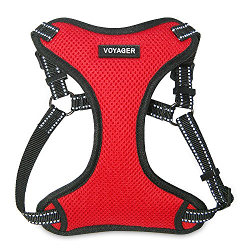 Best Pet Supplies Voyager - Fully Adjustable Step-in Mesh Harness with Reflective 3M Piping (Red, Small) (Cat Harness D-ring)