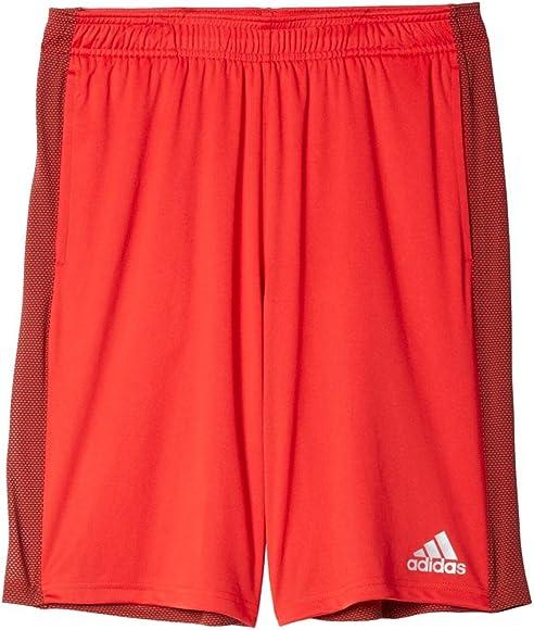 2f92a99c4f58 Men's Climacore Shorts