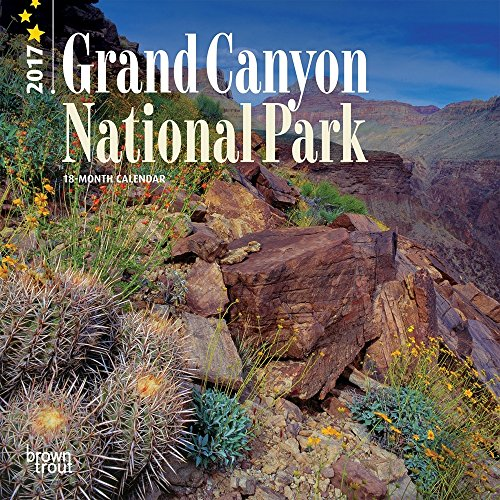 Grand Canyon National Park 2017 Small Wall Calendar