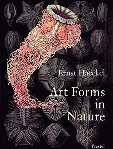 - Art Forms in Nature: The Prints of Ernst Haeckel