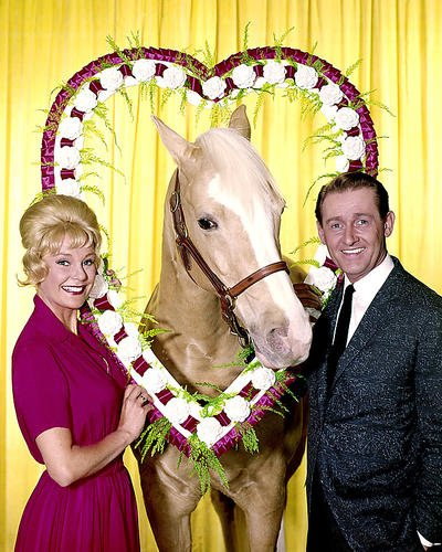 Mister Ed Connie Hines Alan Young Valentine Poster