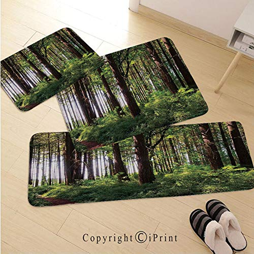 - Farm House Decor 3D Non-Slip Kitchen Mat Runner Rug Set,3pc Kitchen Rug Set,Pathway in a Shady Forest of Bushes and Thick Trunks Grass Unique Wild Life Scenery,for Entryway Kitchen and Bedroom,Green B