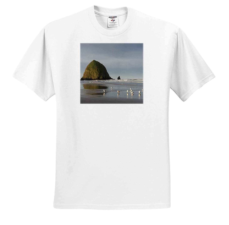 Oregon ts/_314980 Haystack Rock on Cannon Beach 3dRose Danita Delimont Adult T-Shirt XL Oregon