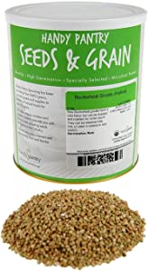 Hulled Buckwheat Groats- 2.5 Lbs - Organic Buck Wheat Groats- Sprouting Seed, Gardening, Planting, Edible Seeds, Emergency Food Storage, Hydroponics