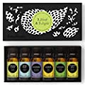 Edens Garden Top 3 Blends & Top 3 Singles Essential Oil Set, Best 100% Pure Aromatherapy Starter Kit (For Diffuser & Therapeutic Use), 10 ml