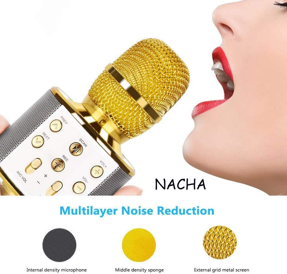 Early Educational Music Toy for Boys Girls KTV Wireless Mic with ...