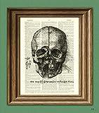 numbers art print - View of a Skull number 3, from Leonardo da Vinci sketch on vintage dictionary page book art print Davinci