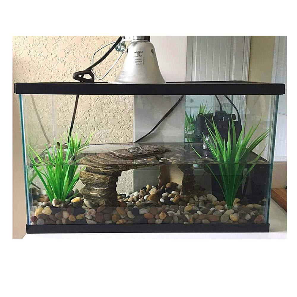 Aquatic Turtle Habitat Aquarium Large Reptile Complete Water Kit Set Portable Tank Lid Ebook