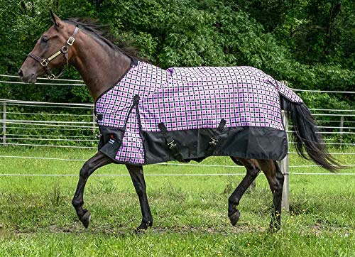 (HORZE Pretty Plaids 1200 Denier Waterproof Turnout Sheet - Dakota)