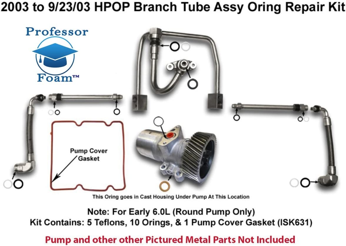 Amazon.com: 2003 to 9/23/03 Powerstroke Diesel HPOP High Pressure Oil  Branch Tube Seal Kit O-Ring: AutomotiveAmazon.com