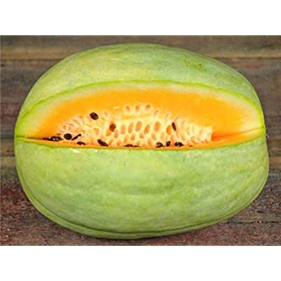 Desert King Watermelon Seeds - light green skin and yellow-orange flesh.!!(10 - Seeds) : Garden & Outdoor