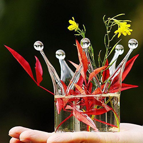 Flower Crown Shape (Beautiful Crown Shape Glass Flower Vase, Candle Stick Plate, Small Fish Tank)