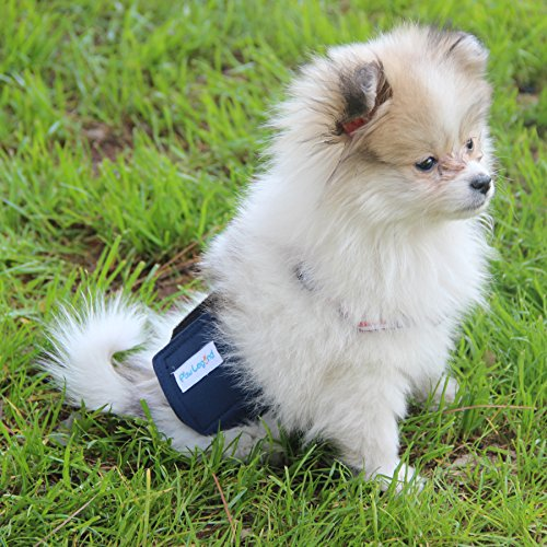 Pictures of Paw Legend Washable Dog Belly Wrap DiapersMale 6
