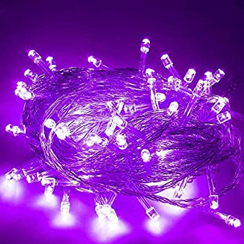 Lieyang Purple 50 Led Fairy String Light Battery Power For Party Christmas Holiday