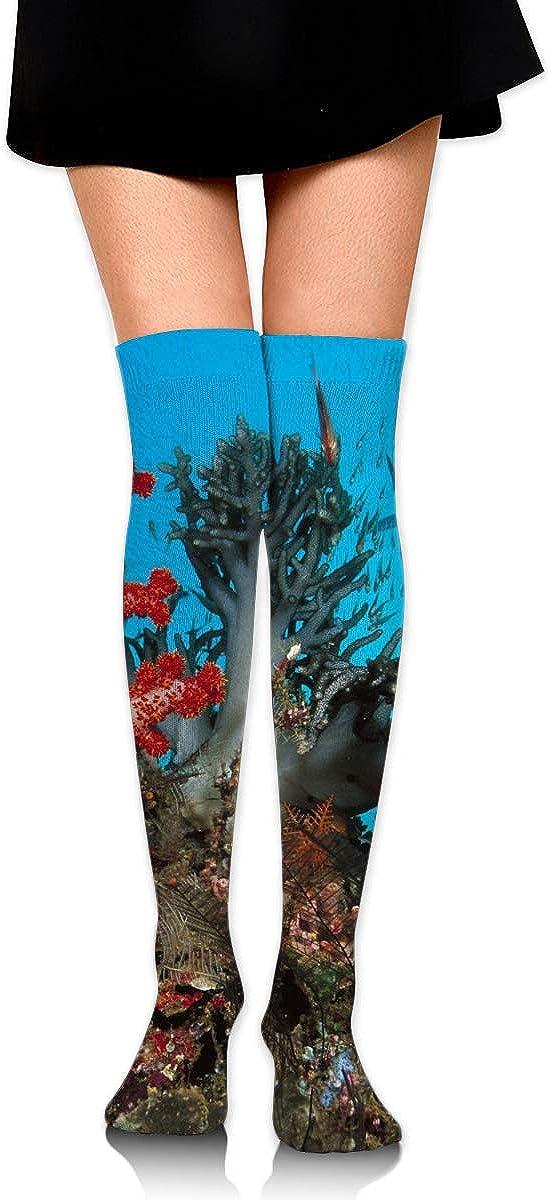 High Elasticity Girl Cotton Knee High Socks Uniform Big Coral Tree Women Tube Socks