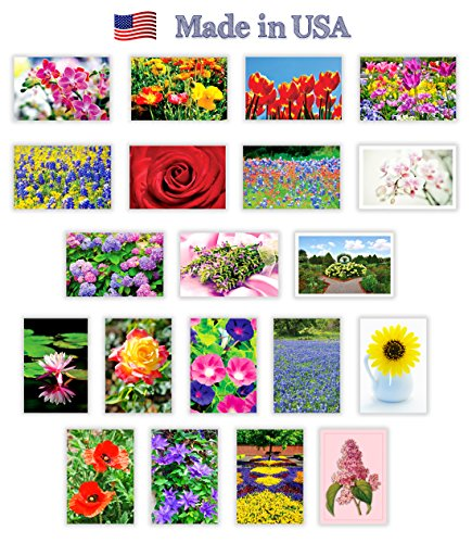 Set Of 48 Spring Thank You Postcards Floral Print Variety
