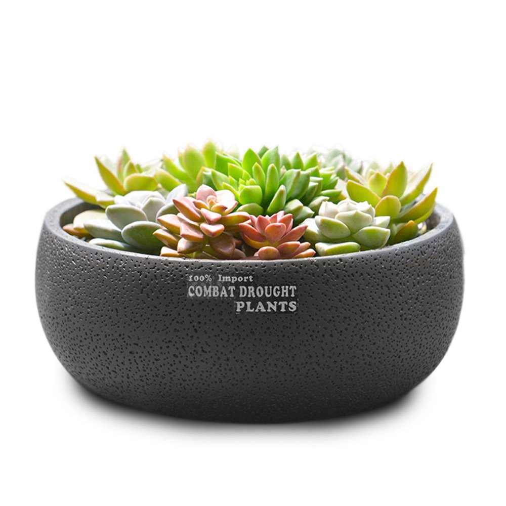 Succulent Gardening Planter Pot,8.66 inch Round Decorative Flower Pot/Container/Planter/Flower Holder Bowl Suitable for Indoor or Outdoor by Yousun