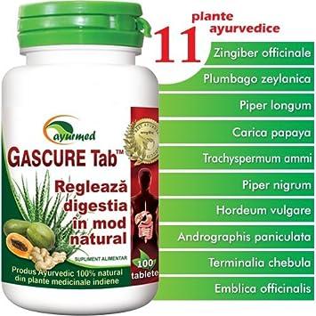 Amazon.com: gascure, 100 tabletas, ayurmed: Health ...