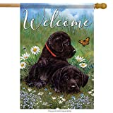 Carson Flag Trends Puppy Love House Flag – Size: 28″ x 40″ For Sale
