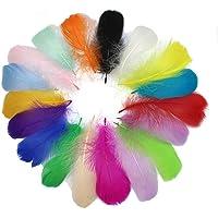 SIMUER 300Piezas Plumas Manualidades De Colores Plumas