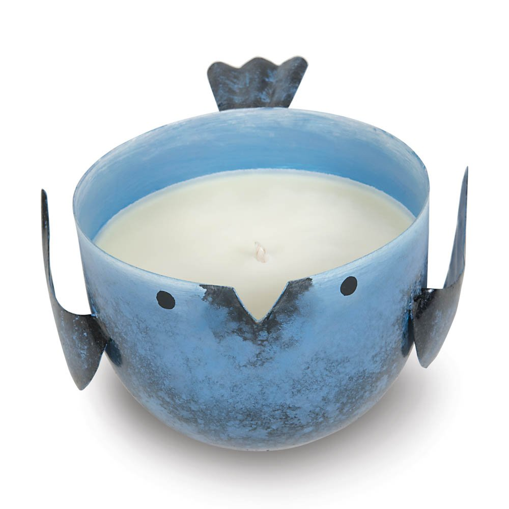 Sunrise Creek Jar Candle, Iron Blue Jar Candles Small Jar Soy Candles Coastal Water Scented (Sold by Case, Pack of 24)