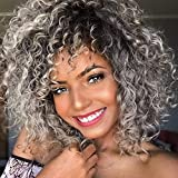 MISSWIG Kinky Curly Wigs Female Synthetic Wig Gray Short Afro Full Wigs for Black Women
