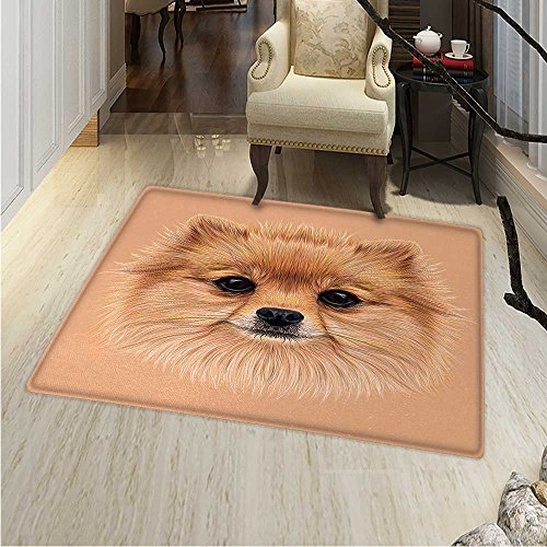 Animal small rug Carpet Pomerian Dog with Vintage Retro Red