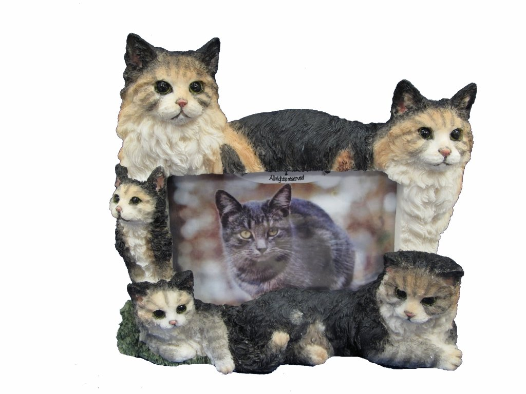 E&S Pets 35297-10 Large Cat Frames