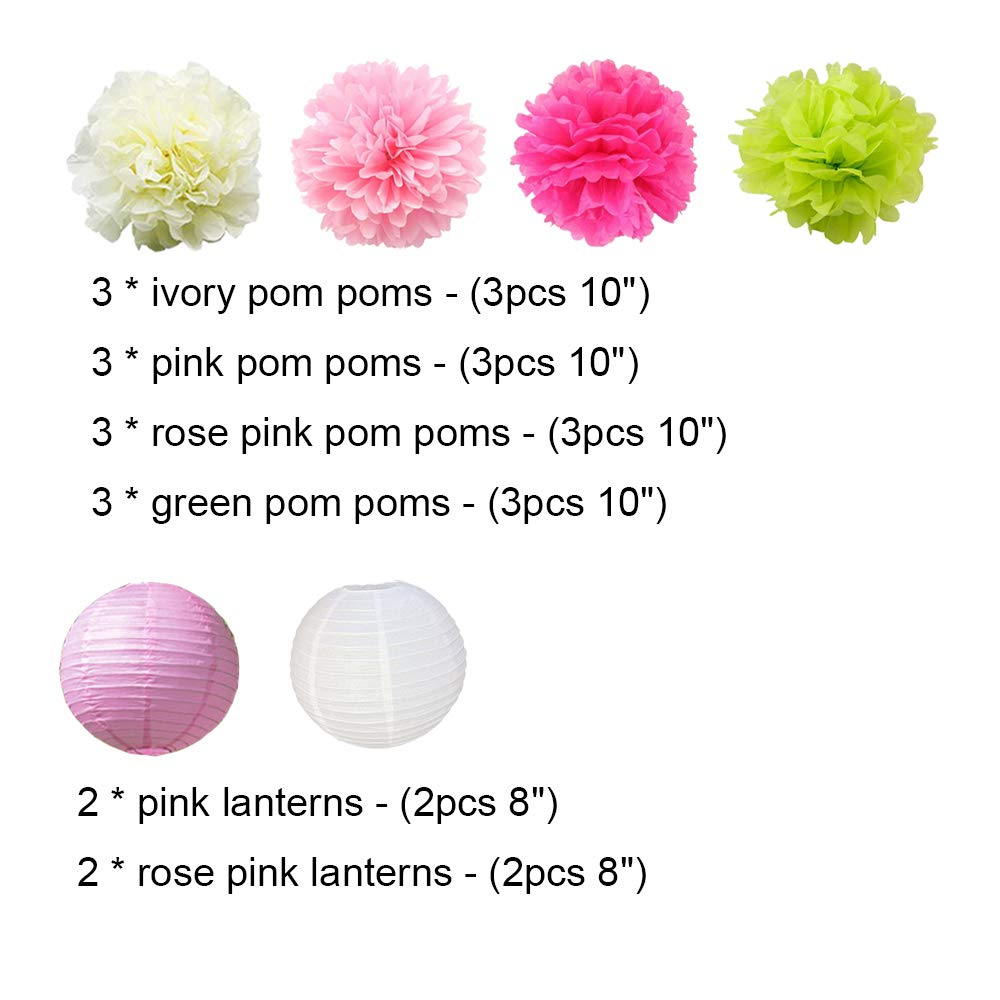 618cb31d679 Amazon.com  16pcs Pom Poms Decorations Tissue Paper Flowers Ball Mixed  Paper Lanterns Craft Kit for Pink Themed Birthday Party Decor Baby Shower  Decor ...