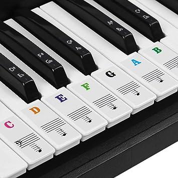 BUZIFU Pegatina para Piano Transparente Pegatina Notas Etiquetas de Teclas del Piano para Piano/Teclado