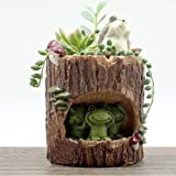 OULII Carino verde rana fiore Sedum succulente Pot fioriera Bonsai trogolo casella pianta Bed Garden Home Office scrivania Pot Decor