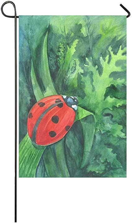 Amazon Com Afagahahs Red Cute Ladybird On Grass Leaf Long Polyester Garden Flag Banner Green Watercolor Ladybug Herb And Leaves Decorative Flag For Wedding Anniversary Home Outdoor Garden Decor Garden