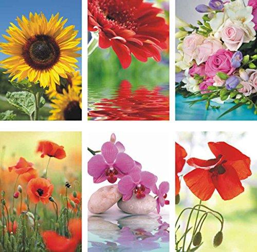 50 Grußkarten Blumen neutrale Glückwunschkarten ohne Text mit Umschlägen 991-5404