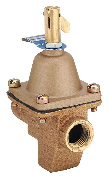 Top 9 Pressure Cooker Regulator Ultra Endura