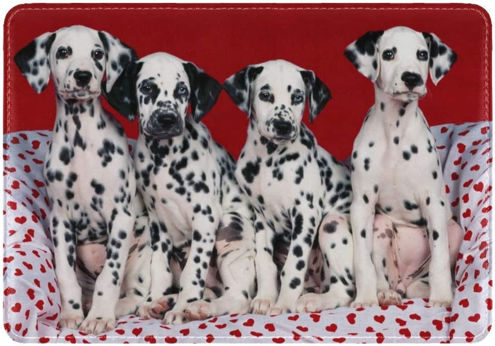 Dalmatians Puppies Dogs Many Leather Passport Holder Cover Case Travel One Pocket