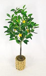Fake Lemon Tree Plant Artificial Plastic Tree Faux Potted Lemon Fruit Tree for Home Office Decor 32