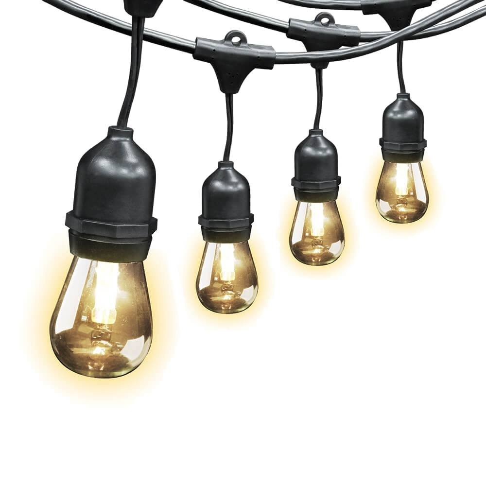 Feit Electric Indoor/Outdoor String Lights, 48ft - Great for Homes, Restaurants and Special Occasions (Includes 24 Light Sockets)